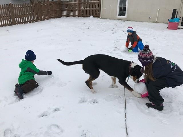 Sarah's kids snow